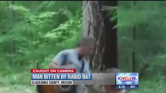 Bat bites Oregon camper on neck