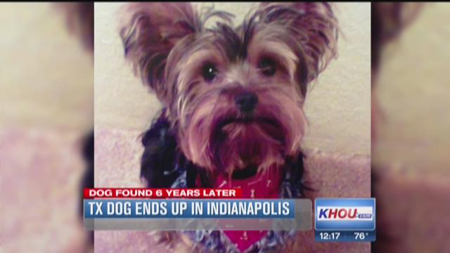Texas woman reunited with dog after six years