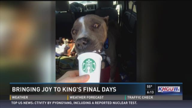 Bringing joy to King's final days
