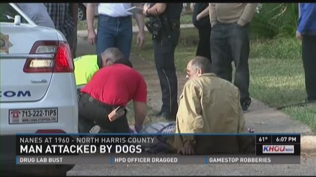 A 59-year-old man was attacked by two pit bulls during