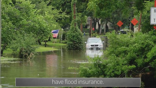 Hurricane Quick Tips: Insurance and Scams