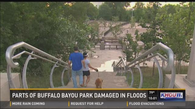 Footpaths in the park suffered structural damage and