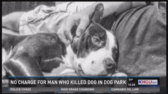 No charge for man who killed dog in dog park