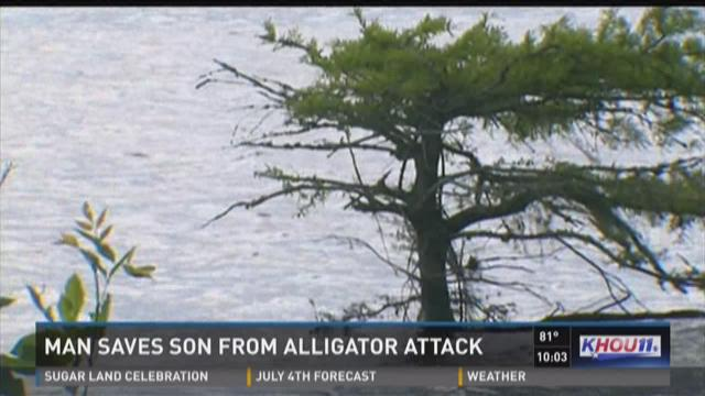 Man saves son from alligator attack