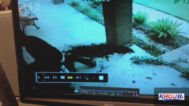 Surveillance Video of Mission Bend Shooting Suspect Released