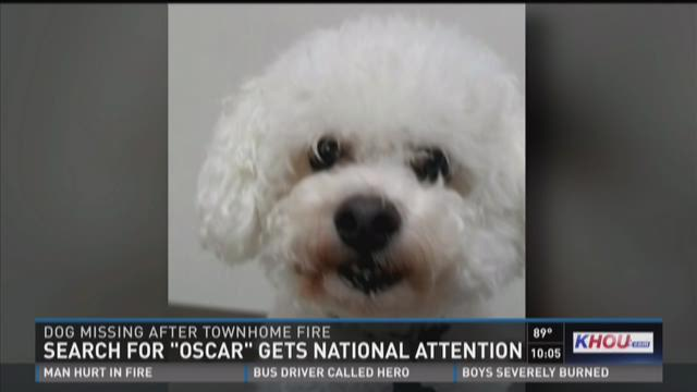 """Search for """"Oscar"""" gets national attention"""