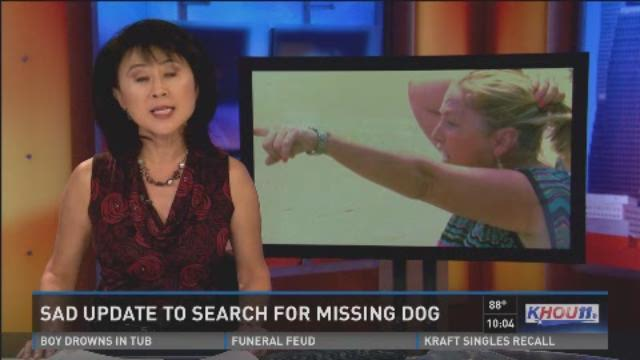 Sad update in search for missing dog