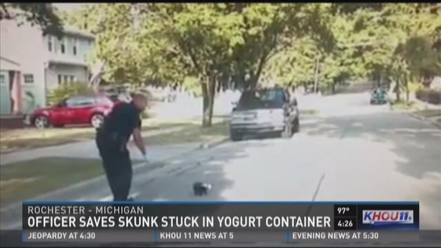 Officer saves skunk stuck in yogurt container