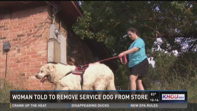 Woman told to remove service dog from grocery store